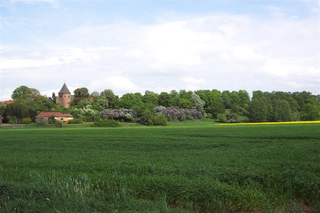 Blick über die Wesermarsch auf die Daverdener Kirche