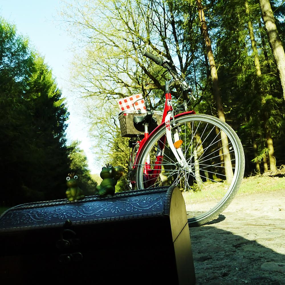Schatzsuche in Langwedel - das sind sechs kurze Radwege, die Sie an die unbekannten Stellen in Langwedel führen